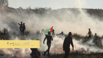 Weekly Report On Israeli Human Rights Violations in the Occupied Palestinian Territory (December 19-25, 2019)
