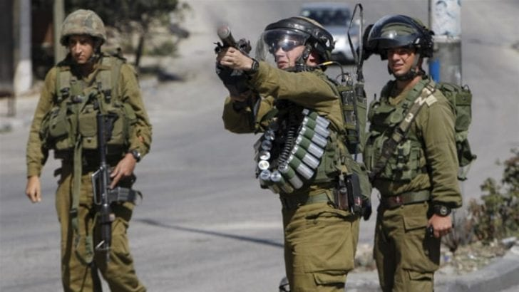 Israeli forces violated int'l law 262 times in past week (23–29 Jan)