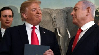 "Trump-Kushner ""Peace"" Plan ignores elephants in the room: Israel created this mess"