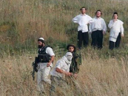 Israelis injure infants, shoot, assault & abduct Palestinians, destroy crops, etc
