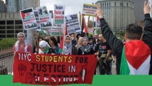 Students for Justice in Palestine have received awards from both Tufts and New York University. Both awards have been denounced by the schools' administrations.
