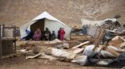 Nov. 1-5: Israelis demolish homes, abduct, injure, attack Palestinians in West Bank & Gaza