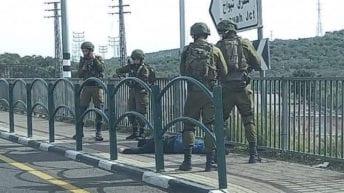 Israeli soldiers shoot Palestinian teen, bleeds to death