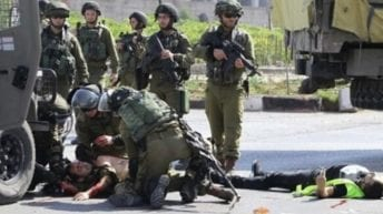 Israeli forces kill 24-year-old, injure, abduct Palestinians, uproot 1,000 trees, Jan. 4-6