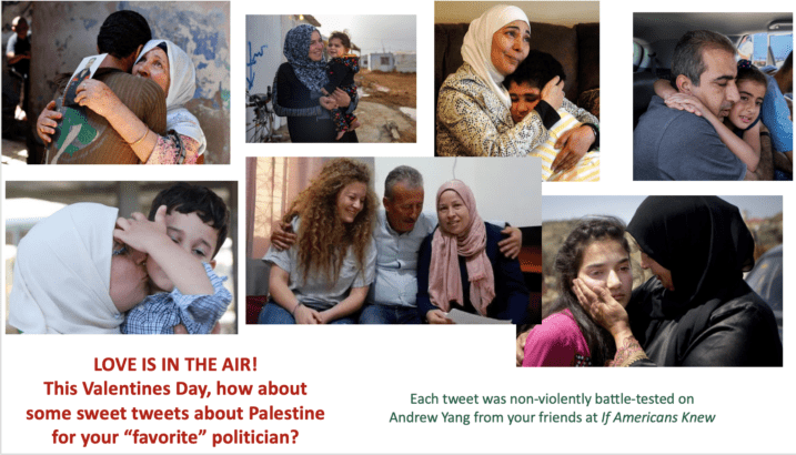 Send some love to Palestine by tweeting to your legislators (tweets included)!
