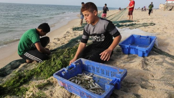 Collective punishment: Israel closes off Gaza's waters to Palestinian fishing